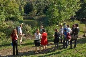 Visiting the Stormwater Wetland at Saylor Grove